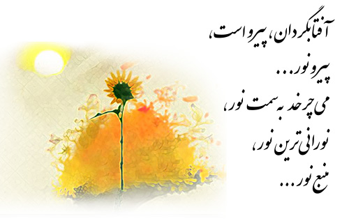 nowruz92-sunflower